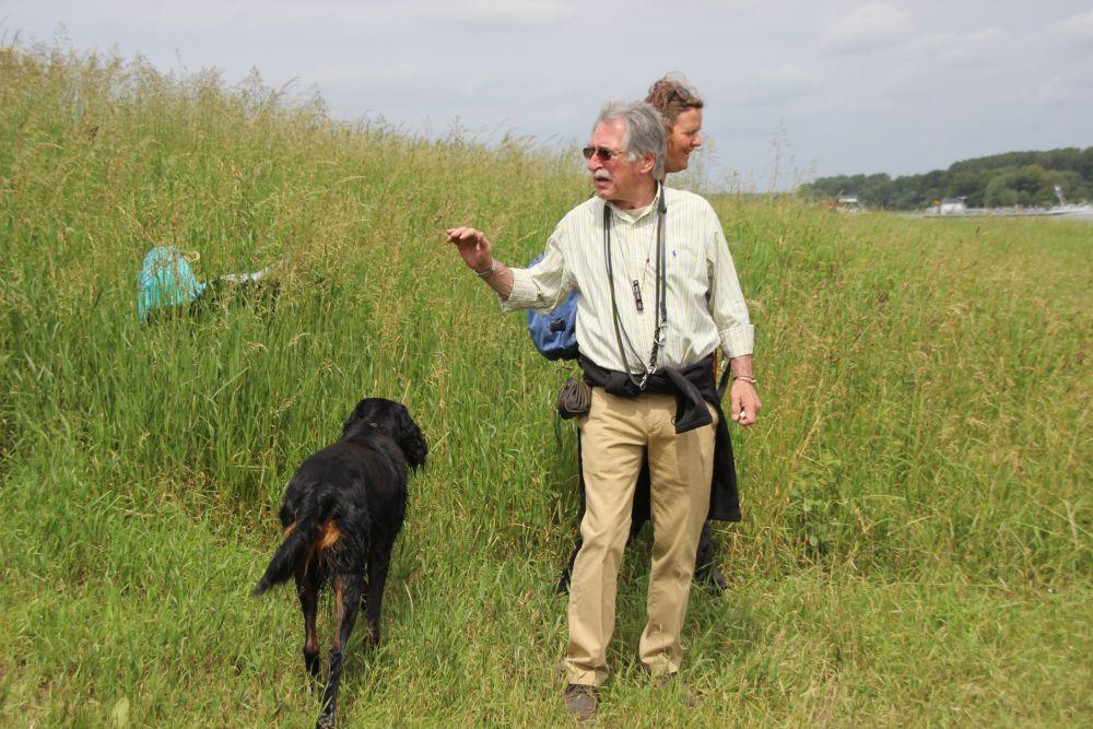 hunde field trail spaniel